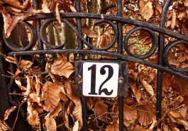 Números de la suerte de cada signo del zodiaco